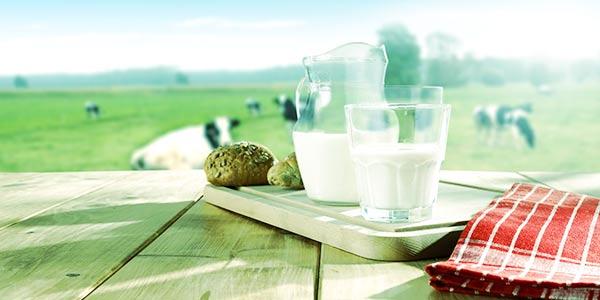 Le lait, le discours du docteur Joyeux.