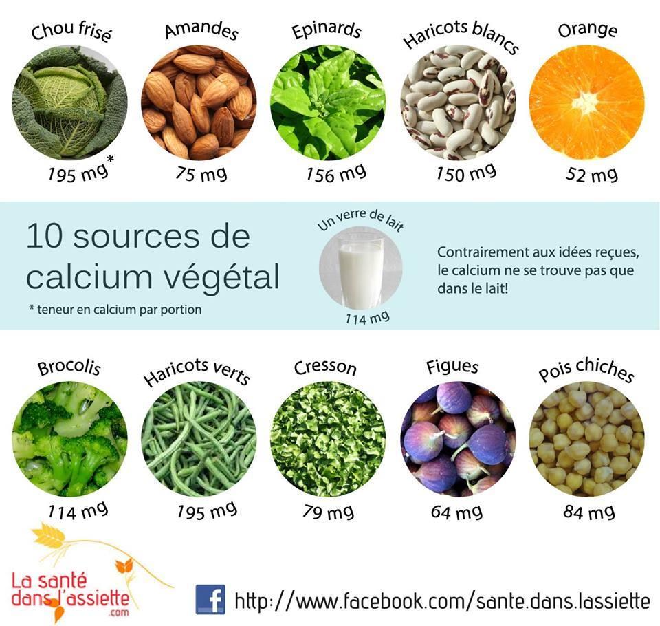 sources-de-calcium